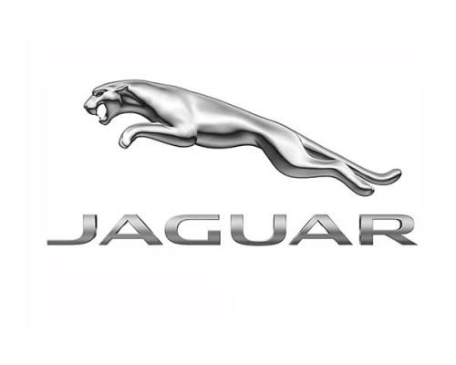 Jaguar LPG - logo