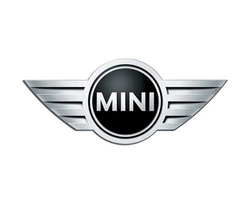 Mini Cooper LPG - logo